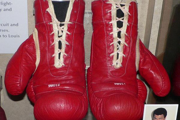 Ali Gloves