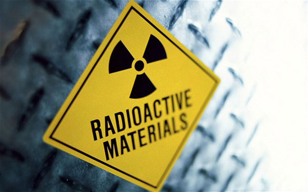 SA affirms stance on nuclear security